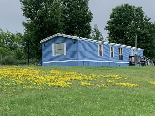 3333 N 166th Avenue, Walkerville, MI 49459 (MLS #21025637) :: BlueWest Properties