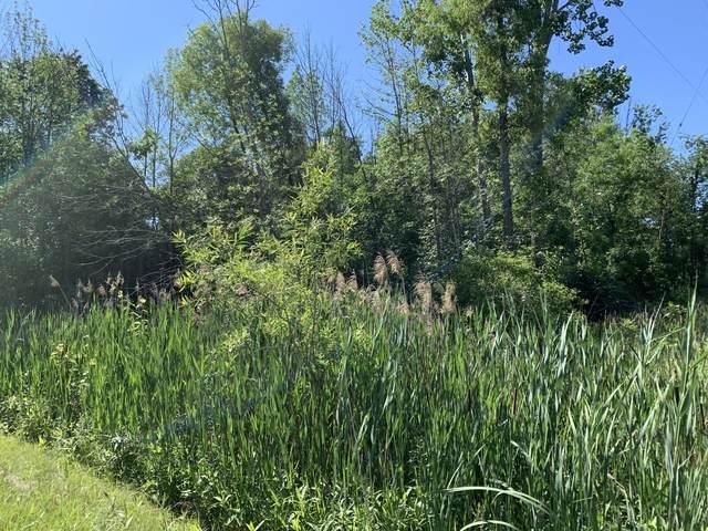 8674 11 Mile Road NE, Rockford, MI 49341 (MLS #21025757) :: Sold by Stevo Team | @Home Realty
