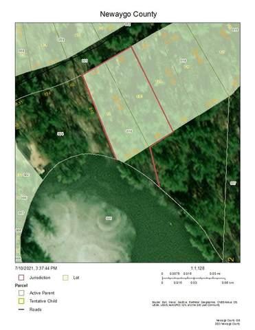 6840 E Four Seasons Drive, Newaygo, MI 49337 (MLS #21026161) :: Deb Stevenson Group - Greenridge Realty