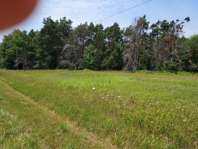 Us 10 Highway, Evart, MI 49631 (MLS #21026174) :: BlueWest Properties