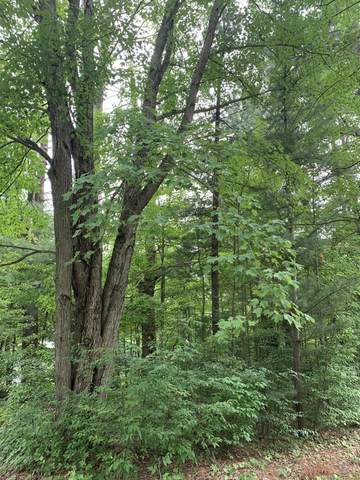 NN V/L Riverpoint Drive, Marion, MI 49665 (MLS #21026222) :: Deb Stevenson Group - Greenridge Realty
