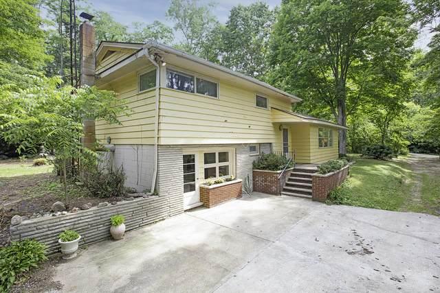 3001 E Riverside Road, Buchanan, MI 49107 (MLS #21026543) :: JH Realty Partners