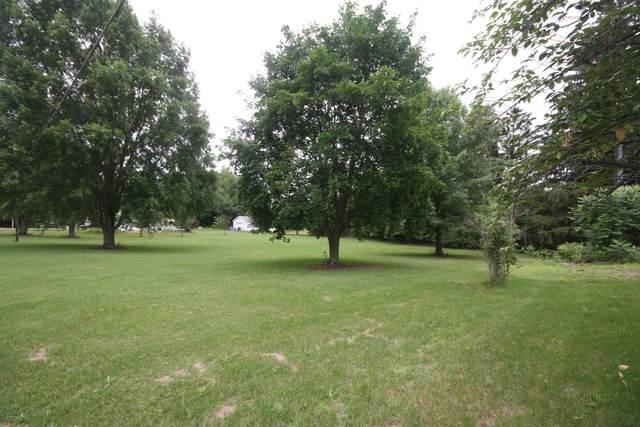 VL M 51 Highway, Decatur, MI 49045 (MLS #21026959) :: The Hatfield Group