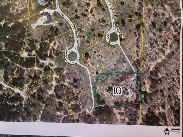Eagle Ridge Circle Lot 103, Onekama, MI 49675 (MLS #21027155) :: Ginger Baxter Group