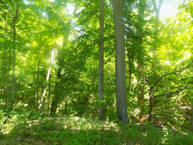 3286 Birch Avenue, Coloma, MI 49038 (MLS #21027304) :: Deb Stevenson Group - Greenridge Realty