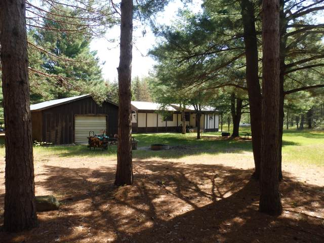 21341 Hoxeyville Road, Wellston, MI 49689 (MLS #21027357) :: Ginger Baxter Group