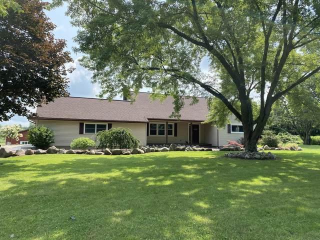 1035 S Tripp Road, Hillsdale, MI 49242 (MLS #21027774) :: Sold by Stevo Team | @Home Realty