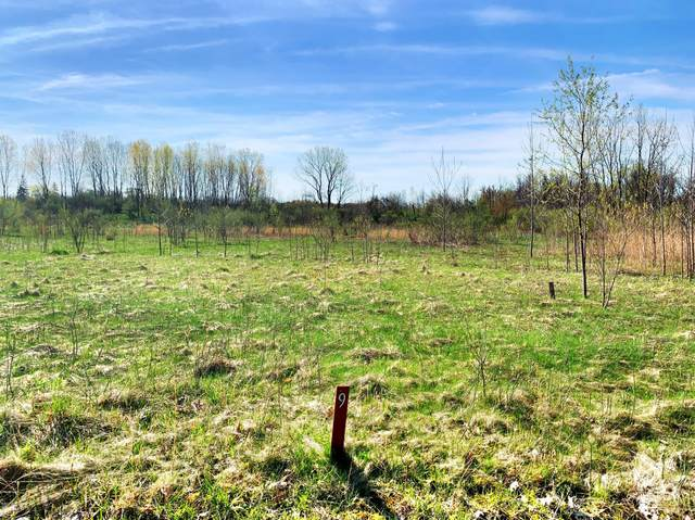 9 Jane Way, Harbert, MI 49115 (MLS #21027944) :: Deb Stevenson Group - Greenridge Realty