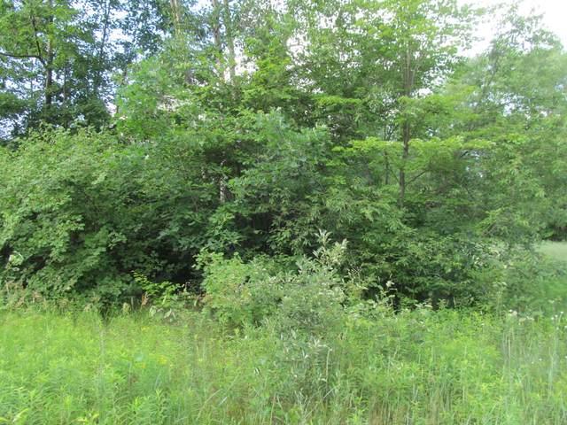 Lot 16 Pond Side Drive, Farwell, MI 48622 (MLS #21027977) :: Ron Ekema Team