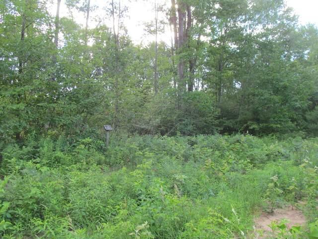 Lot 17 Pond Side Drive, Farwell, MI 48622 (MLS #21028929) :: Ron Ekema Team