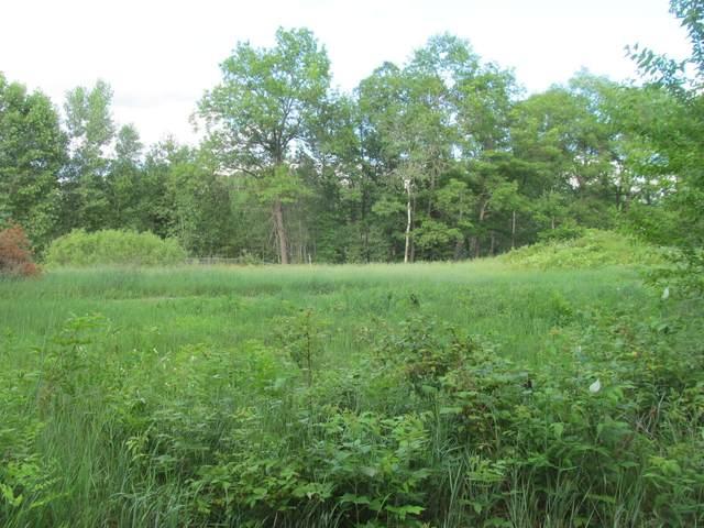 Lot 18 Pond Side Drive, Farwell, MI 48622 (MLS #21029861) :: Ron Ekema Team