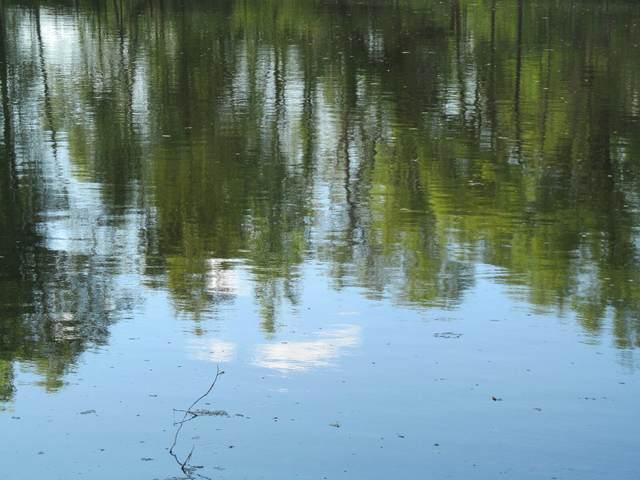Lot 20 Pond Side Drive, Farwell, MI 48622 (MLS #21031794) :: Ron Ekema Team