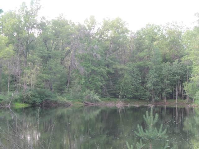 Lot 21 Pond Side Drive, Farwell, MI 48622 (MLS #21032434) :: Ron Ekema Team