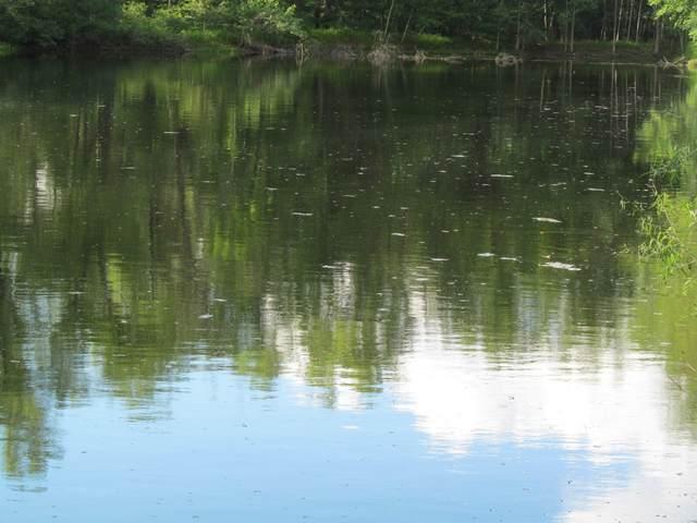 Lot 22 Pond Side Drive, Farwell, MI 48622 (MLS #21032442) :: Ron Ekema Team