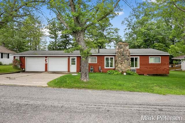 921 Lou Anne Street, Stanton, MI 48888 (MLS #21033739) :: BlueWest Properties