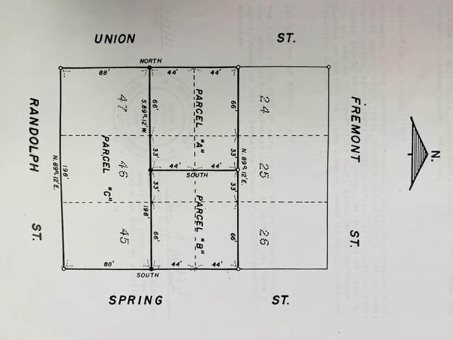 76 Spring Street, Douglas, MI 49406 (MLS #21033850) :: Ron Ekema Team