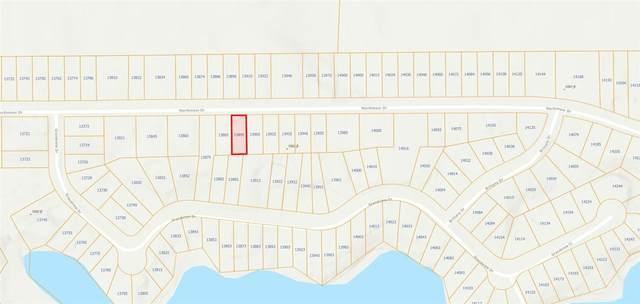 13895 Northmoor Dr, Cement City, MI 49233 (MLS #21036577) :: JH Realty Partners