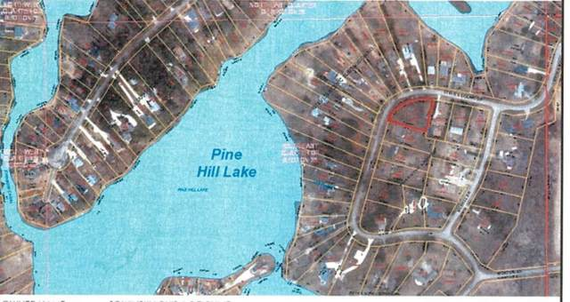 Lot 31 Steves Scenic Dr, Horton, MI 49246 (MLS #21036856) :: BlueWest Properties