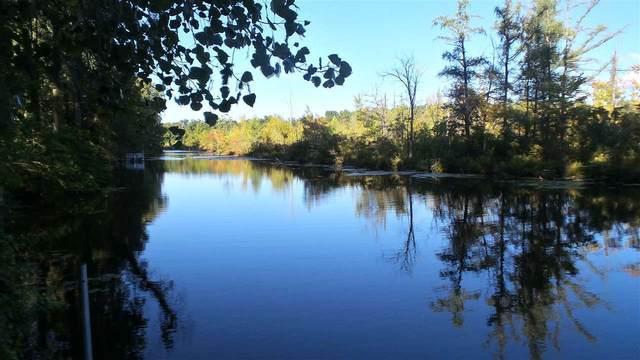 10230 Tims Lake Blvd, Grass Lake, MI 49240 (MLS #21037012) :: Deb Stevenson Group - Greenridge Realty