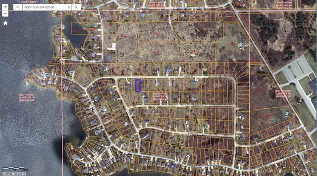 241 Ambler, Brooklyn, MI 49230 (MLS #21040606) :: BlueWest Properties