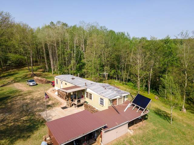 1883 N State Road, Luther, MI 49656 (MLS #21064808) :: BlueWest Properties