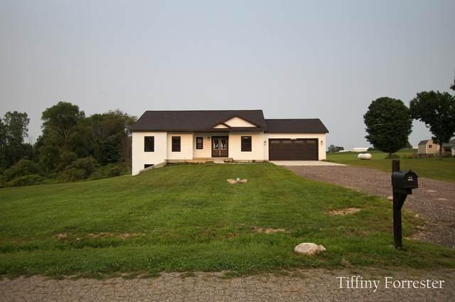 21650 Centennial Drive, Conklin, MI 49403 (MLS #21065446) :: Deb Stevenson Group - Greenridge Realty