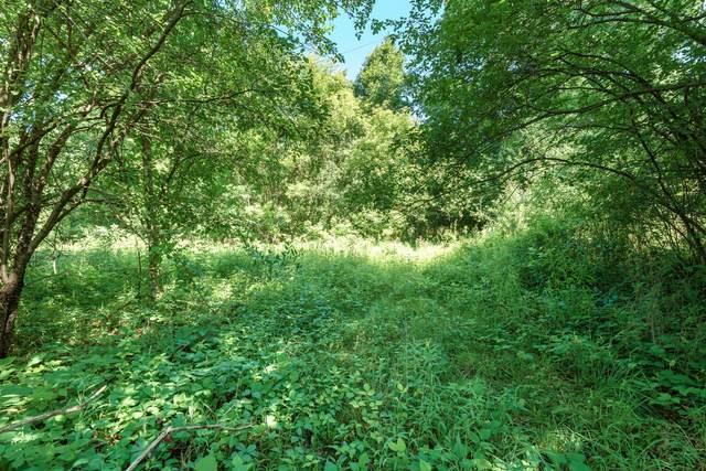 Watkins Road, Battle Creek, MI 49015 (MLS #21079086) :: Deb Stevenson Group - Greenridge Realty