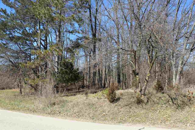 11872 S Lakeside Dr, Jerome, MI 49249 (MLS #21094985) :: JH Realty Partners