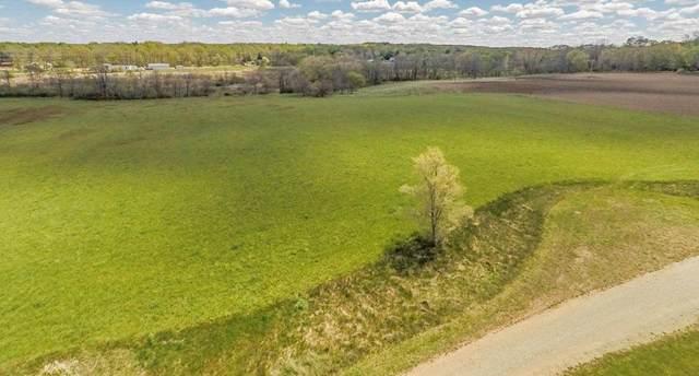 LOT E Pine Brook Ln 11.96 Acres Pin, Rives Junction, MI 49277 (MLS #21095039) :: Ron Ekema Team