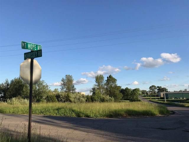 V/Land Mt Hope Rd, Grass Lake, MI 49240 (MLS #21095191) :: CENTURY 21 C. Howard