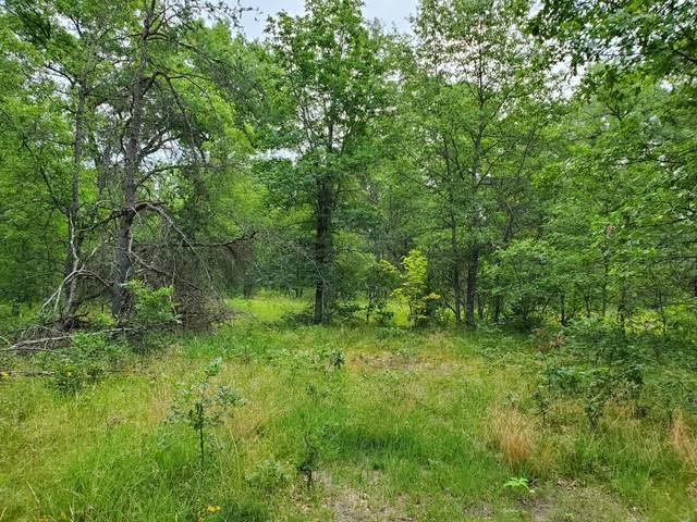 00 Spice Bush, Idlewild, MI 49642 (MLS #21095352) :: BlueWest Properties