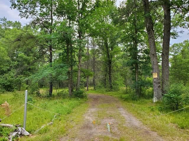 4767 Spice Bush, Idlewild, MI 49642 (MLS #21095361) :: BlueWest Properties