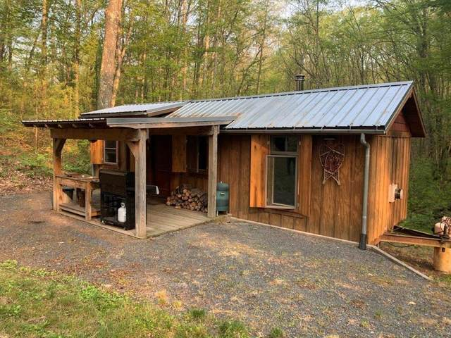 V/L ++ Grant, Bitely, MI 49309 (MLS #21095417) :: BlueWest Properties
