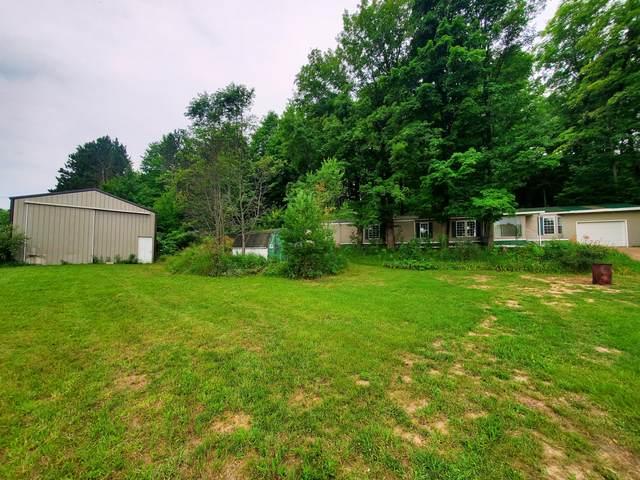 3931 N 11 1/2 Road, Mesick, MI 49668 (MLS #21095442) :: BlueWest Properties