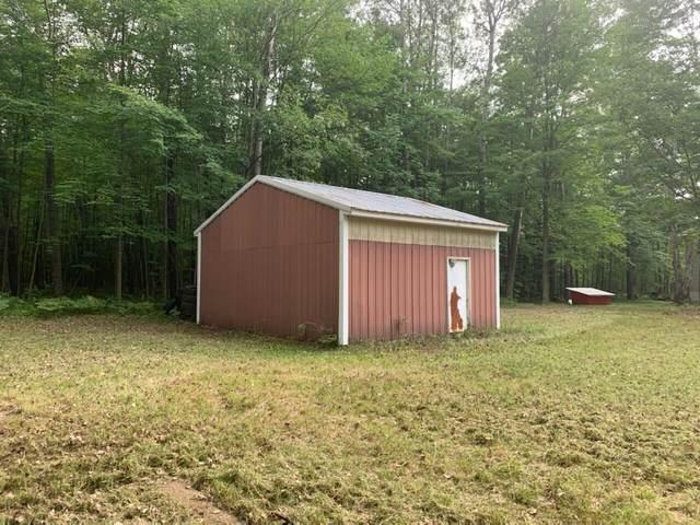 12191 Timber Trail, Rodney, MI 49342 (MLS #21095460) :: Ron Ekema Team