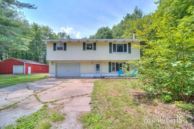 4683 Dalson Road, Twin Lake, MI 49457 (MLS #21095580) :: JH Realty Partners