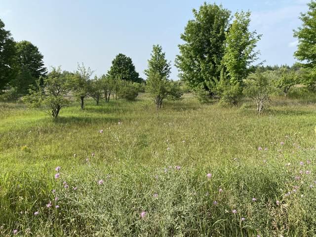 10 Acres, Alkire Road, Bear Lake, MI 49614 (MLS #21096699) :: Ron Ekema Team