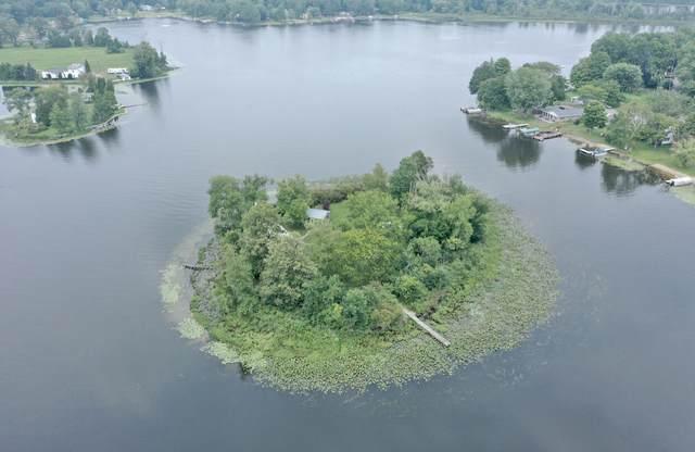 1 Pipestone Lake Drive, Eau Claire, MI 49111 (MLS #21096708) :: Ron Ekema Team