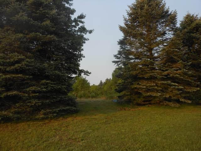 4678 Lake Pines Drive, Berrien Springs, MI 49103 (MLS #21096770) :: CENTURY 21 C. Howard