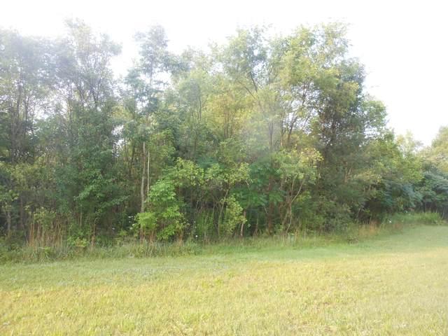 4568 Lake Pines Lane, Berrien Springs, MI 49103 (MLS #21096781) :: CENTURY 21 C. Howard