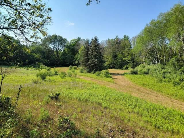 00 E Washington Road, White Cloud, MI 49349 (MLS #21096983) :: Deb Stevenson Group - Greenridge Realty
