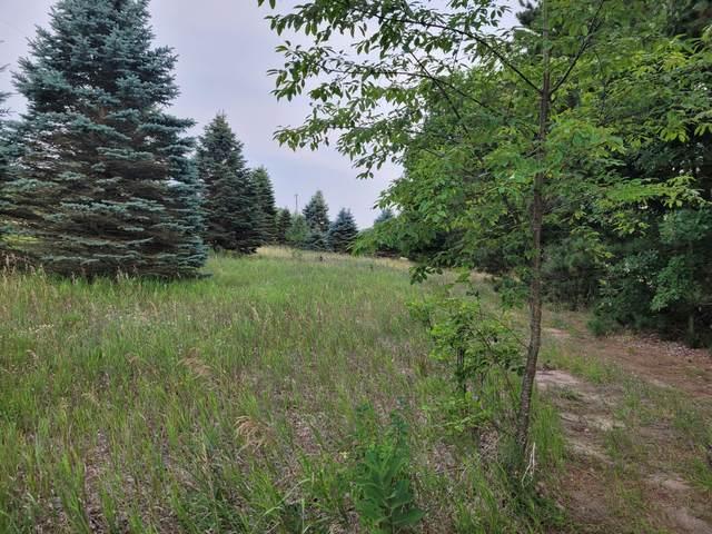 3.69-acres N 100th, Hart, MI 49420 (MLS #21097047) :: BlueWest Properties