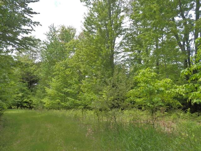 Parcel H Wildwood Trail, Manistee, MI 49660 (MLS #21097162) :: Ron Ekema Team