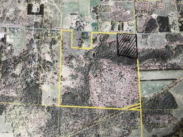 15 Acres m/l, Tannerville Road, Kaleva, MI 49645 (MLS #21097309) :: The Hatfield Group