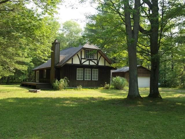 1041 Wolf Lake Drive, Baldwin, MI 49304 (MLS #21097366) :: Deb Stevenson Group - Greenridge Realty
