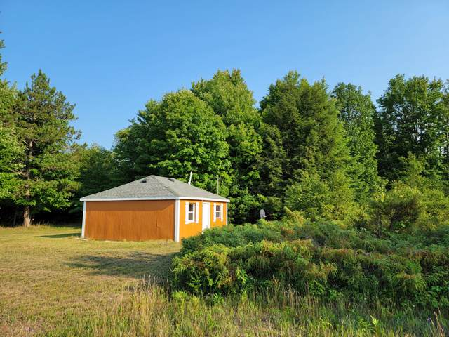 11381 Jouppi Road, Bear Lake, MI 49614 (MLS #21097506) :: Deb Stevenson Group - Greenridge Realty