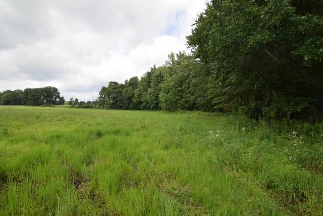 Craft Road, Quincy, MI 49082 (MLS #21097590) :: Deb Stevenson Group - Greenridge Realty