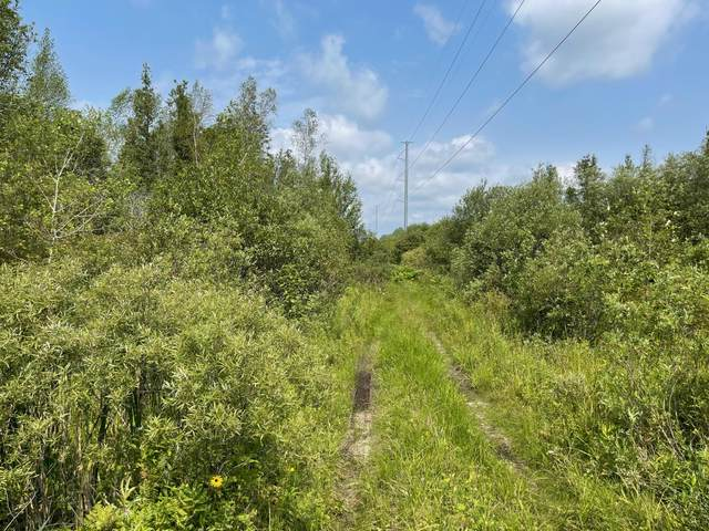 Laverne Road, Wellston, MI 49689 (MLS #21097964) :: BlueWest Properties