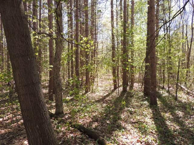 5818 Hunters Ridge, Fennville, MI 49408 (MLS #21097981) :: BlueWest Properties