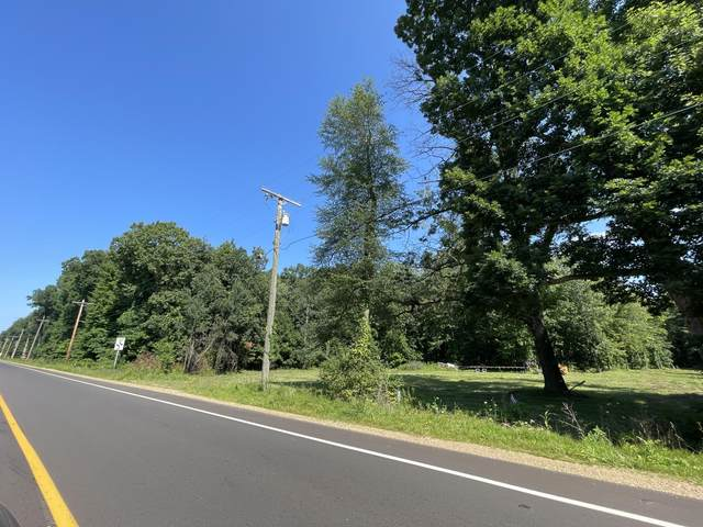 0 Red Arrow Highway, Union Pier, MI 49129 (MLS #21098349) :: BlueWest Properties